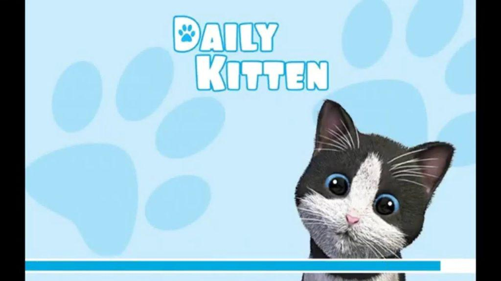 2885 Daily Kitten Virtual Cat - HD Android Gameplay - Child games - Full HD Video (1080p)