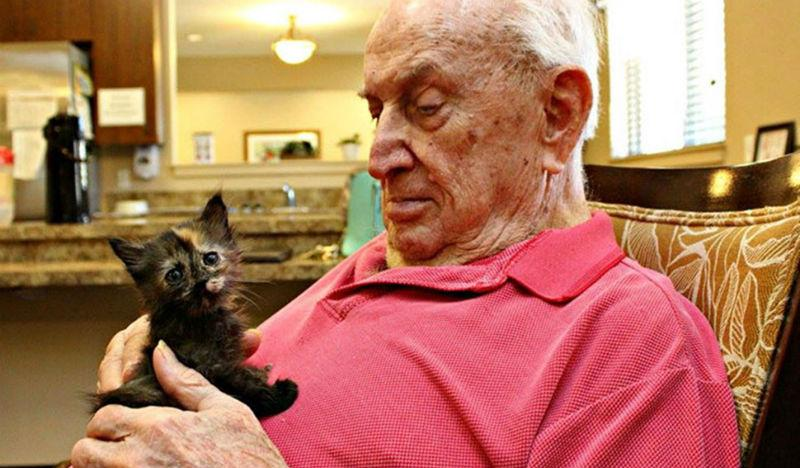 22219 Дом престарелых, где заботятся и о пожилых людях, и о брошенных животных