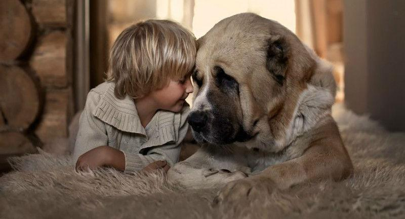 23900 Россиянка создает потрясающие фотографии своих детей с животными в деревне