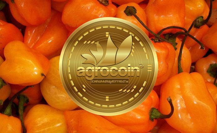 33866 В Мексике выпустили криптовалюту, обеспеченную острым перцем хабанеро