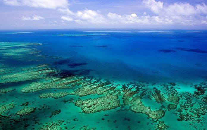 59230 Туристов на Большой Барьерный риф будут привлекать криптовалютами