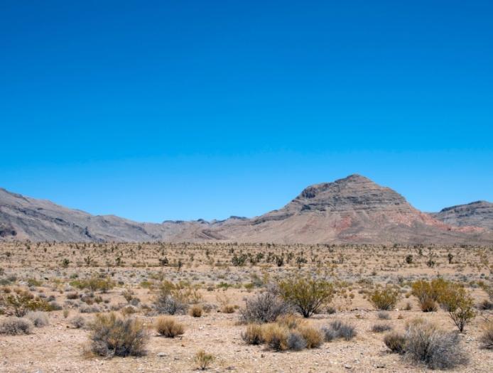 76298 Криптоинвестор вложил $300 млн в строительство «блокчейн-города» в пустыне Невады