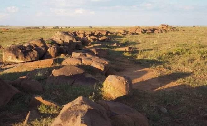 115718 В Южной Африке обнаружены древние петроглифы