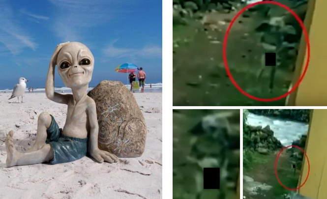 116279 Инопланетянина сняли в Крыму