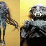 116638 Жуткие индонезийские куклы-мумии