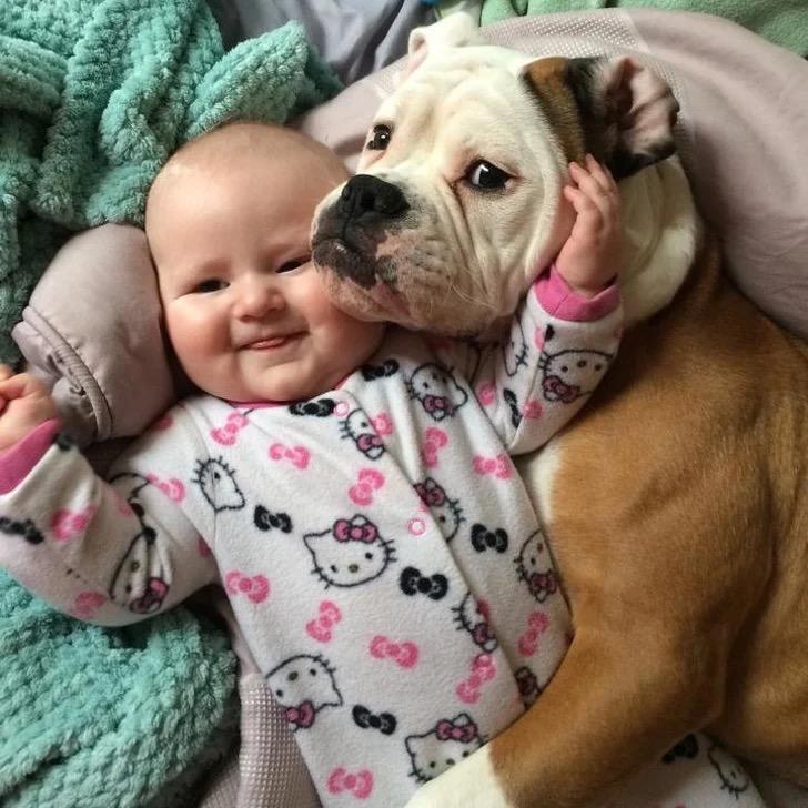 Все еще сомневаетесь, что вашему ребенку необходимо домашнее животное?