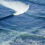 118903 Если вы наблюдаете на море «квадраты», нужно срочно вытаскивать всех и вся из воды!