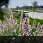 128201 Фотографируя повседневность и путешествия, с примерами и иллюстрациями